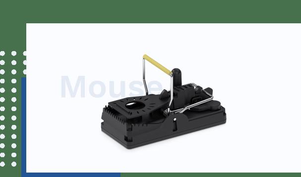 TrapSensor Mouse